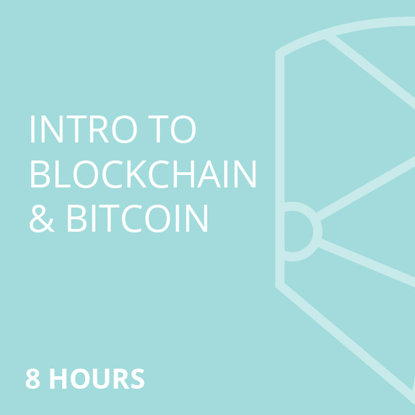 that book on blockchain a one hour intro